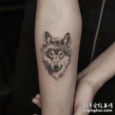 手臂可爱的灰色3D狼头纹身图案