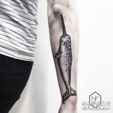 手臂大型黑白色独角鲸纹身图片