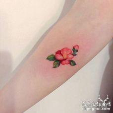 手臂唯美的粉色茶花纹身