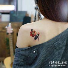 美女后肩红深绿三种颜色的唯美茶花纹身图案