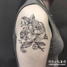 美女胳膊上3多带有素描元素的茶花纹身图案