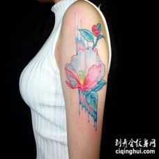 胳膊上水彩茶花纹身图案
