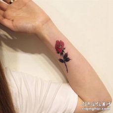 美女手臂彩色茶花与枝叶纹身图案
