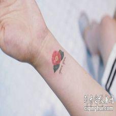 手腕小清新茶花纹身图案