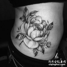 腰部素描3D茶花朵纹身图片