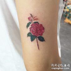美女胳膊红色茶花与枝叶纹身图片