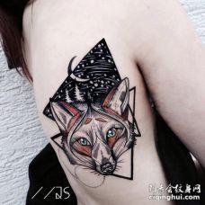美女肋骨部位美丽的3D狐狸纹身设计图案