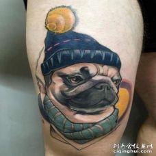 带着帽子扎着围巾的3D逼真巴哥犬纹身图案