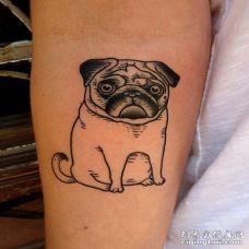 手臂上一只表情惊讶的3D巴哥犬纹身图案