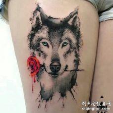 美女雪白大腿上点刺一只叼着玫瑰花的哈士奇
