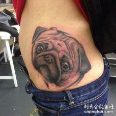 肋骨处一只表情可怜巴巴的巴哥犬3D纹身图案