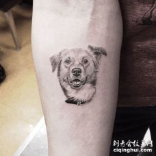 手臂上耷拉着耳朵的灰色金毛3D纹身图案