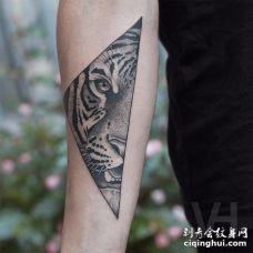 手臂三角形老虎半面纹身图案