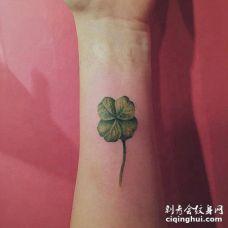 写实派风格的带茎四叶草3D纹身图片
