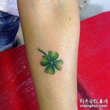 手臂上一个有点枯萎的四叶草纹身图片