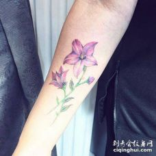 手臂深粉色桔梗花纹身图案