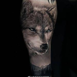 黑灰写实森林狼小臂纹身图案