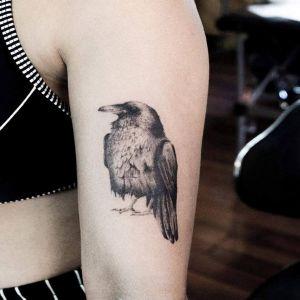 大臂小清新黑灰风乌鸦纹身图案