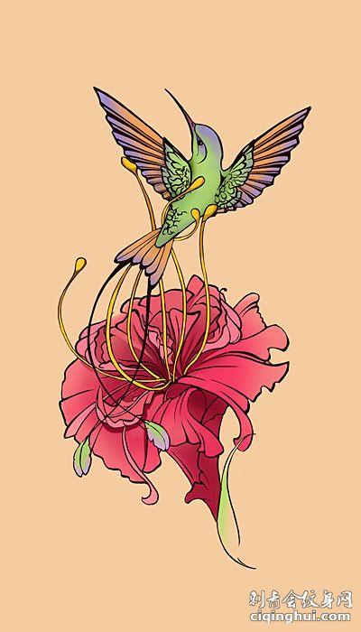 木槿花上的小鸟纹身手稿