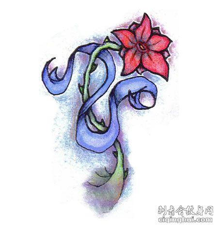花藤纹身手稿