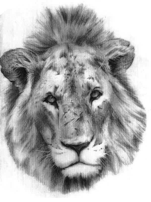 凶猛狮子纹身素材