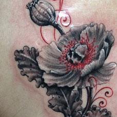 潮流精致罂粟花纹身坊作品图案欣赏