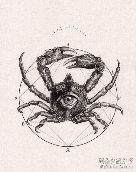 圆形和大螃蟹纹身手稿