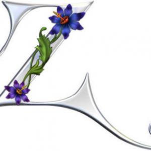 银色花藤缠绕英文字母z纹身手稿图片