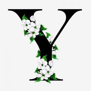 中国风花朵字母Y纹身手稿图片