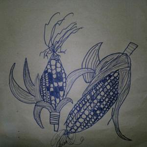 写实玉米纹身手稿图片