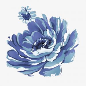 蓝莲花纹身手稿图片