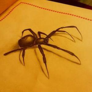 3d恐怖蜘蛛纹身手稿图片