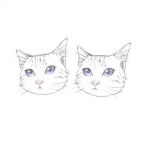 手绘可爱蓝色眼睛猫咪纹身手稿图片