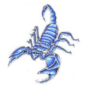 蓝色蝎子纹身手稿图片
