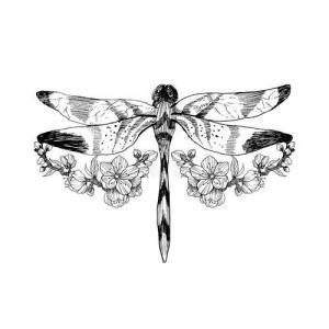 创意蜻蜓纹身手稿图片