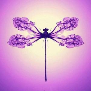 烟雾缭绕的蜻蜓和蝴蝶纹身手稿图片