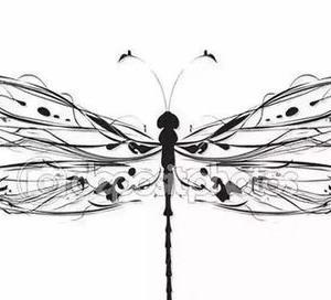 个性唯美蜻蜓纹身手稿图片