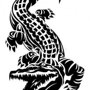 鳄鱼图腾纹身手稿图片