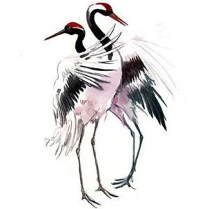水彩水墨仙鹤纹身手稿图片
