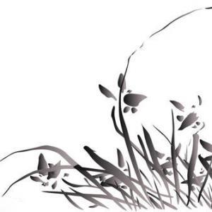 黑色水墨兰花纹身手稿图片