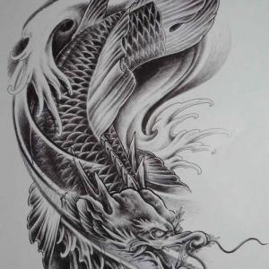 黑灰鳌鱼纹身手稿图片