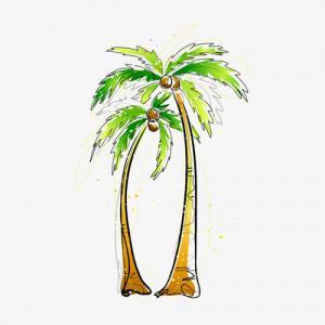 水彩椰树纹身手稿图片