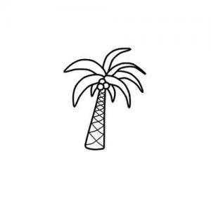 简笔画椰树纹身手稿图片