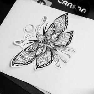 飞蛾骷髅.纹身手稿图片