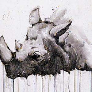 水墨与水彩犀牛纹身手稿图片