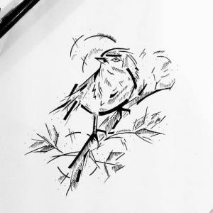 个性麻雀纹身手稿图片