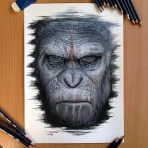 写实猩猩纹身手稿图片