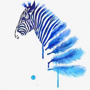 水彩蓝色羽毛斑马纹身手稿图片