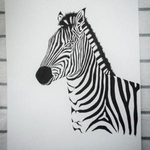 手绘黑白斑马纹身手稿图片