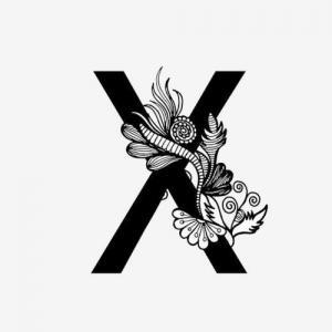 黑白奢华X字母纹身手稿图片